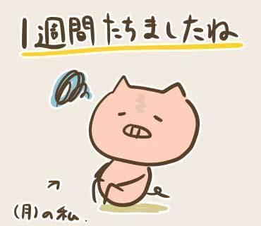 1週間目 (1).jpg