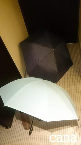 ウネコン武道館2 (1).jpg