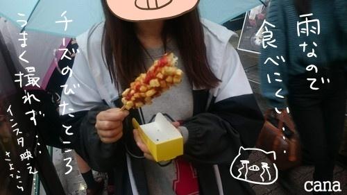 ウネコン武道館2 (15).jpg